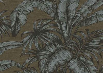 Brown_palm